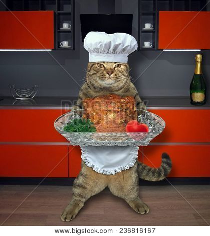 The Cat Chef Holds A Crystal Tray With Baked Beef In The Kitchen.