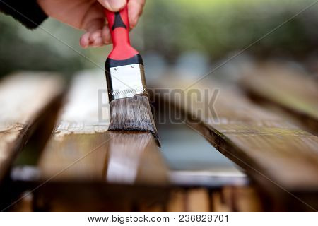 Close-up Of A Hand With Paintbrush, Wooden Boards Are Varnished Or Stained. Brushing Boards With Dar