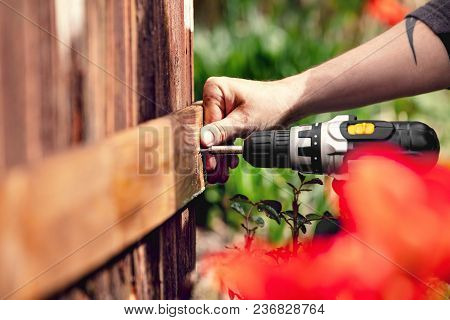 Man Fixes A Board To A Wooden Wall With An Electric Cordless Screwdriver And A Torx Screw.