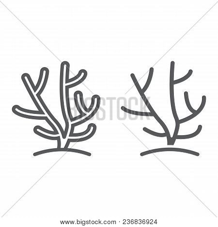 Coral Line And Glyph Icon, Ocean And Underwater, Tropical Sign Vector Graphics, A Linear Pattern On