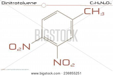 Large And Detailed Infographic Of The Molecule Of Dinitrotoluene.