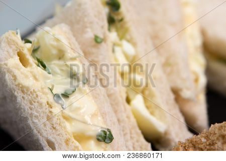 Vegetarian Sandwiches A Selection Of Vegetarian Sandwiches Egg And Cress