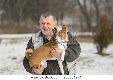 Outdoor Portrait Of Caucasian Senior Man Taking His Lovely Basenji Dog On The Hands. Both Are Happy