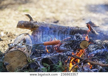 Food Tourist On Fire, Sausages On Skewers Know The Fire In The Forest, Traveler Resting In The Fores