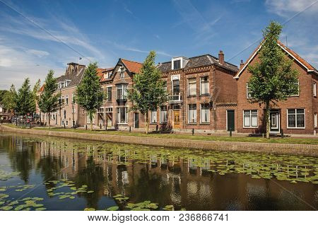Tree-lined Canal With Aquatic Plants And Brick Houses In A Sunny Day In Weesp. Quiet And Pleasant Vi