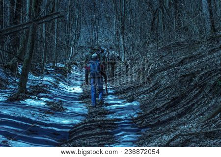 Travelers Walk Along The Path In The Night Forest Mysterious And Fantastic Atmosphere Pure And Beaut