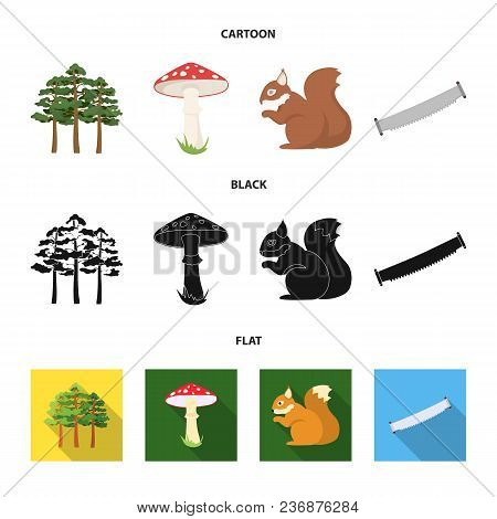 Pine, Poisonous Mushroom, Tree, Squirrel, Saw.forest Set Collection Icons In Cartoon, Black, Flat St
