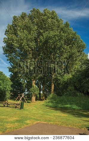 Garden With Tall Leafy Trees, Lawn, Wooden Bench And Blue Sky In The Sunset At Weesp. Quiet And Plea