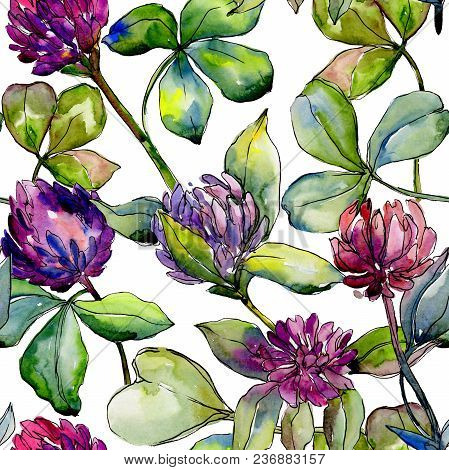 Wildflower Clover Flower In A Watercolor Style Pattern. Full Name Of The Plant: Clover. Aquarelle Wi