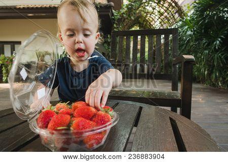 Charming Little Boy Enjoying Fresh Ripe Strawberry Standing Near Table On Terrace.