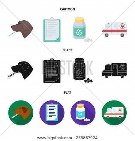 Hospital, Veterinarian, Dog, Thermometer .vet Clinic Set Collection Icons In Cartoon, Black, Flat St