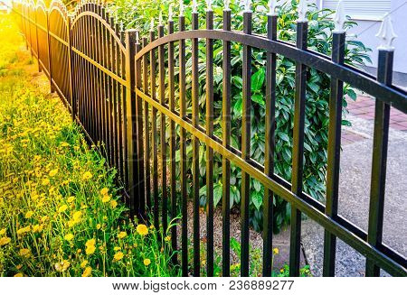 Iron Fence, Black Iron Fence, Metal Fence