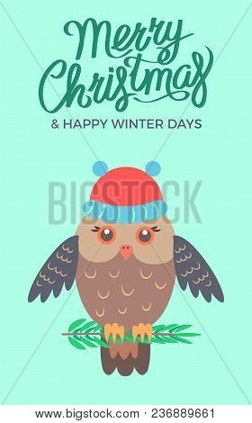 Merry Christmas And Happy Winter Days, Poster Representing Owl Sitting On Branch Of Pine And Wearing
