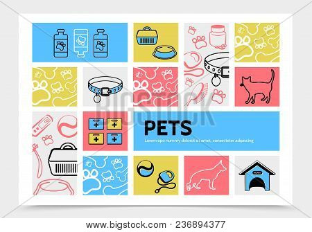Pets Infographic Template With Cat Dog Collars Pills Carrier Doghouse Comb Bowl Feed Thermometer Lea