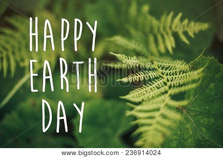 Happy Earth Day Text, Concept. Beautiful Fern Leaf And Moss  In Woods. Fern Leaves In Sunny Forest.