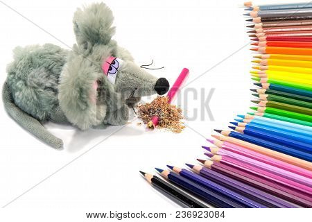 The Toy Mouse Bit A Pencil. A Set Of Colored Pencils Will Take Revenge On Her. Isolated On White Bac