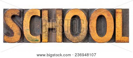 school - isolated word abstract in vintage letterpress wood type blocks stained by color inks