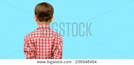 Handsome toddler child with green eyes backside, rear view over blue background