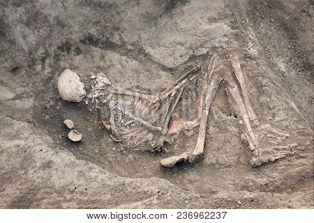 Archaeological Excavations And Finds (bones Of A Skeleton In A Human Burial),   A Detail Of Ancient