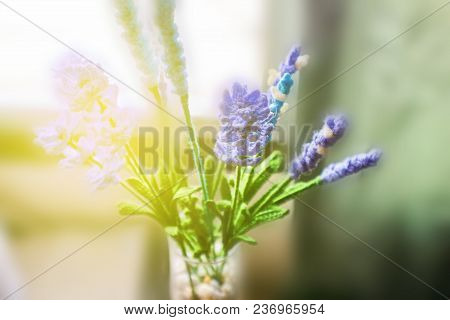 Blurred Lavender Flower Crochet In The Morning Light And Soft Focus