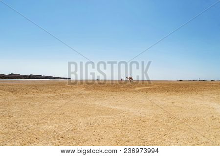 Deserted Shore Of The Red Sea, In The Background, A Bedouin Leads A Camel, A Yacht At Sea, A Lightho