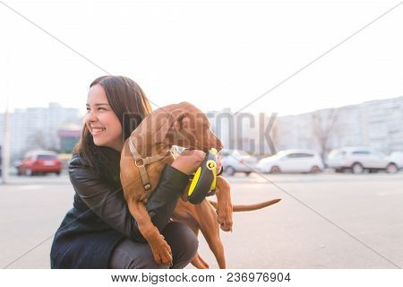 Happy Girl Is The Owner And Dog On The Background Of The City At Sunset. Death With A Dog In The Cit