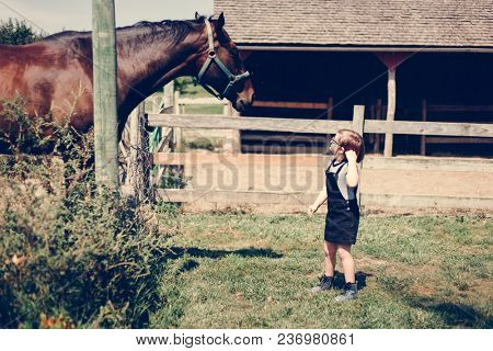 Young girl with a horse in the field