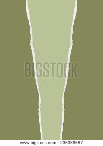 Desaturated Green Wrapping Paper With Angled Centre Tear