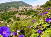Valldemossa from Majorca view from purple Ipomea flowers foreground poster