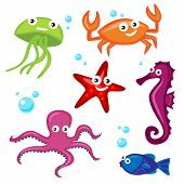 Collection of Colorful Sea Creatures for Web or Print poster