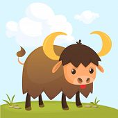 Cartoon american bull (buffalo, ox, bison) gazing on meadow. Colorful  page for kids and children poster