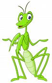 Vector illustration of a green praying mantis poster
