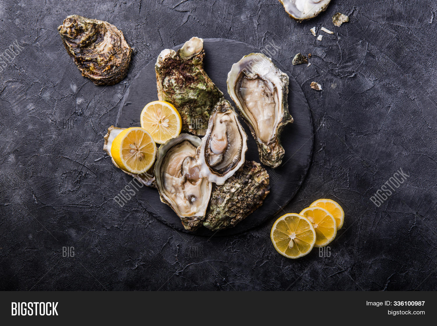 Fresh Open Oysters Image Photo Free Trial Bigstock
