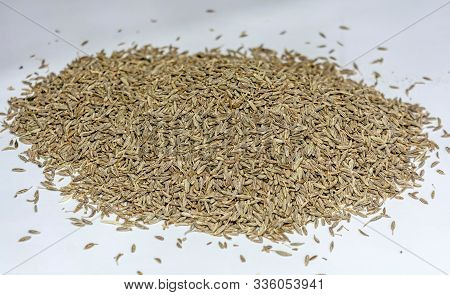 Heap Of Cumin Seeds (jeera) On A White Background,isolated.macro.