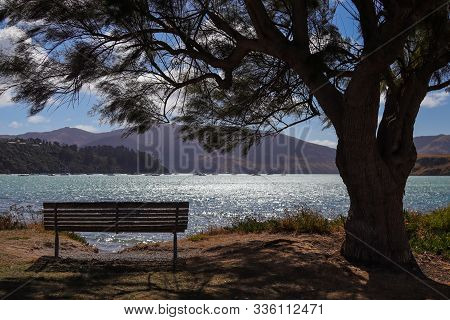 Tranquil Lake Viewed From Behind A Bench