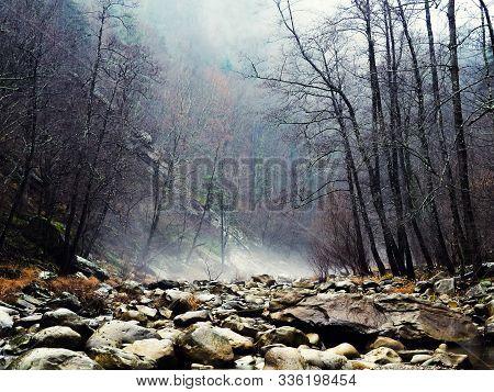 Mystique Off Season Forest Stones River. Mountain Forest With Stones. Mountain Road In The Forest. F