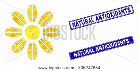 Mosaic Flower Icon And Rectangle Natural Antioxidants Seal Stamps. Flat Vector Flower Mosaic Icon Of