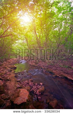 Mountain Forest River At Sunset