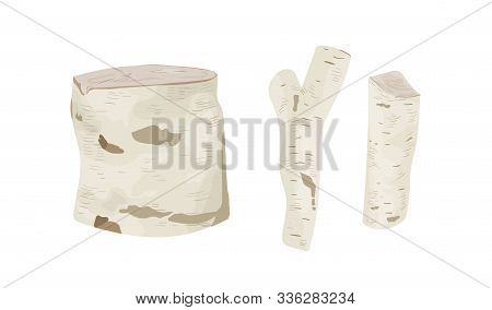 Birch Tree Stumps And Logs Vector Illustrations Set. Trunk Parts With White Bark Top And Side View.