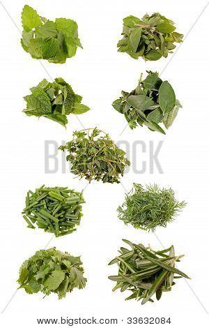 nine herbs