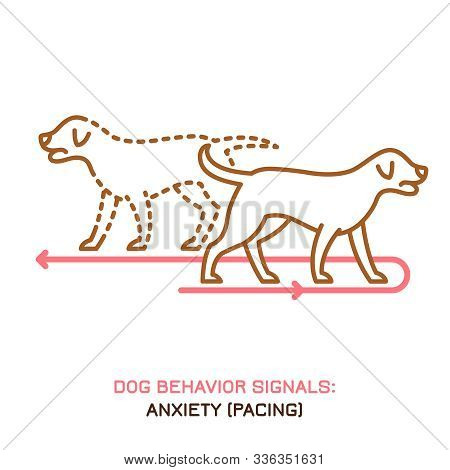 Dog Fearful And Anxious Behavior Icon. Domestic Animal Or Pet Tail Language. A Pacing Labrador. I Am