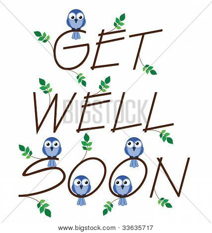 Get well soon twig text isolated on white background poster