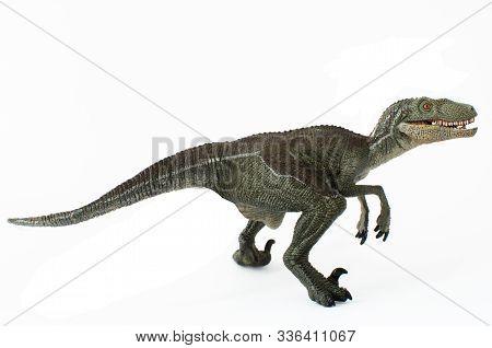 Velociraptor Ready To Attack Isolated On White Background. Velociraptor Is A Carnivorous Dinosaur Li