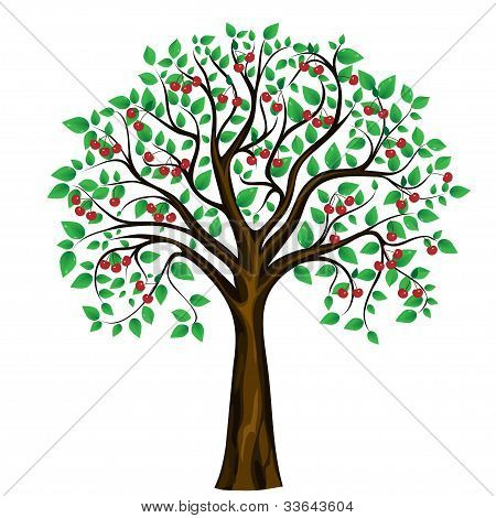 vector abstract cherry tree on white background