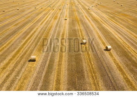 Aerial View Of The Field During Haymaking. Round Haystacks Are Scattered Across The Field
