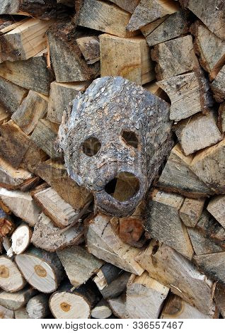 The Fragment Of The Bark Of The Tree Resembles A Mask Of A Monster
