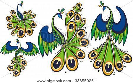 Peacocks. Peacock Vector Set. Bird Logo For Your Design