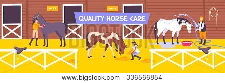 Horizontal And Flat Horse Stable Farm Composition With Quality Hors Care Description Vector Illustra