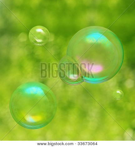 Soap bubbles on green natural background