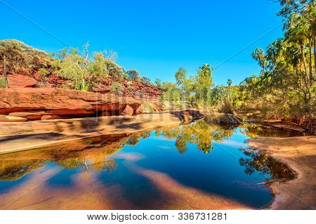 Red Cabbage Palm And Rugged Sandstone Cliffs Reflected On Permanent Waterhole In Heart Of Palm Valle